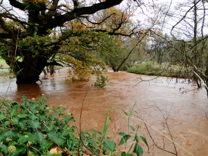 Flooding in Monmouthshire
